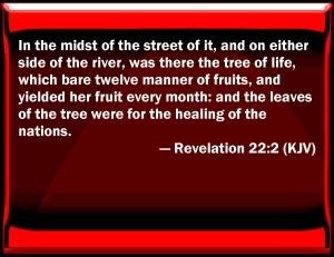 KJV_Revelation_22-2