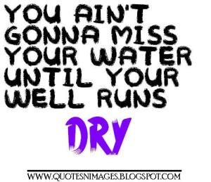 you-aint-gonna-miss-your-water-until-your-well-runs-dry