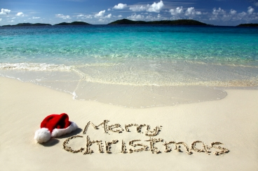 bigstockphoto_tropical_christmas_2137936