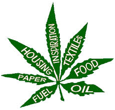 ECONOMIC_AND_ENVIRONMENTAL_BENEFITS_OF_MARIJUANA